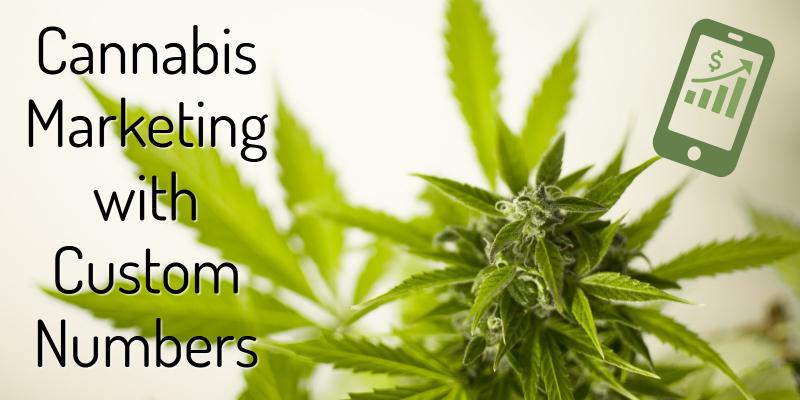 Cannabis Marketing with Custom Marketing Phone Numbers